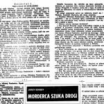 Edigey Jerzy - Morderca szuka drogi